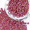 Opaque Glass Seed BeadsSEED-S023-01A-05-1