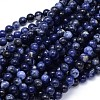 Round Natural Sodalite Beads Strands G-F222-39-8mm-1