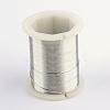 Copper Jewelry WireCWIR-R004-0.3mm-01-1