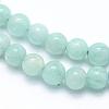 Natural Amazonite Beads StrandsX-G-F555-15-5mm-3
