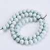 Natural Agate Beads StrandsX-G-S286-06D-2