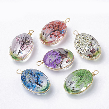 Glass Pendants, with Dried Flower Inside & Brass Findings, Oval, Golden, Mixed Color, 23x13x10mm, Hole: 2mm