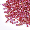 Opaque Glass Seed BeadsSEED-S023-01A-05-2